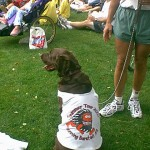 Ben Bridge (the dog) with Running Barefoot 2003 Summer Tour shirt
