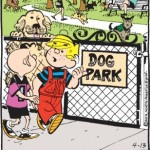 Dennis and Doggie-Doo: Canine Hookworms