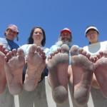 IBRD soles