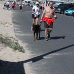 Barefoot dog